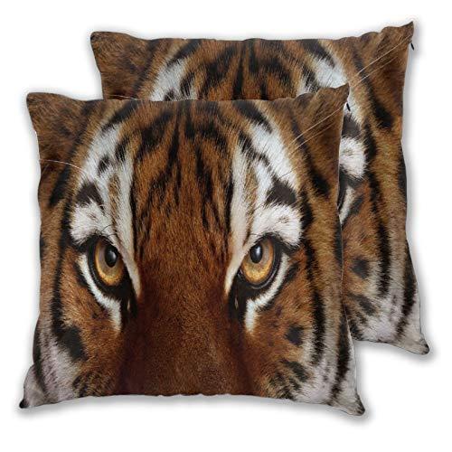 ALLMILL Juego de 2 Decorativo Funda de Cojín,Ojos De Gato Cara Tigre Tigres Rey del Bosque,Funda de Almohada Cuadrado para Sofá Cama