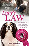 Lucy's law by Marc Abraham