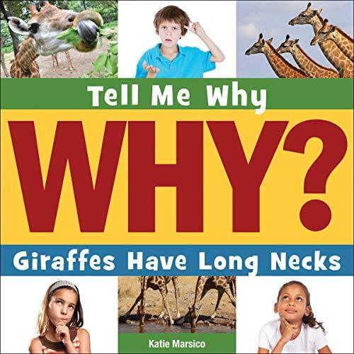 Giraffes Have Long Necks cover art
