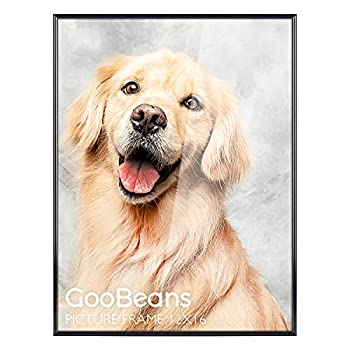 GooBeans 12x16 inch Metal Poster Picture Frame 12 x 16 Aluminum Photo Frames with HD Acrylic and Wall Hook Included for Wall Mounting and Displaying Black