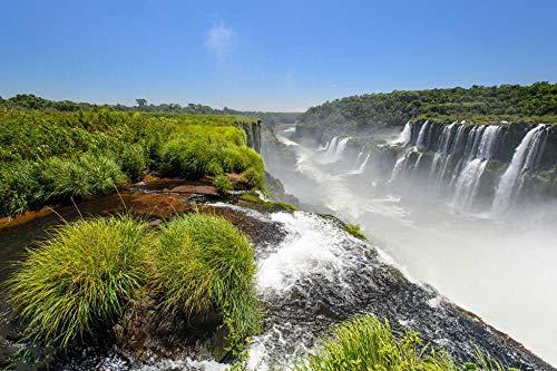 Puzzle Jigsaw para Niños Adulto Juguete Regalo Puzzle   Cataratas del Iguazú, Argentina   Rompecabezas De Bricolaje Juego De 1000 Piezas