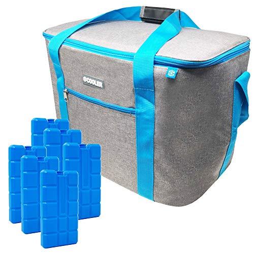 ToCi Kühltasche Isoliertasche Thermotasche Picknicktasche Kühlbox für Picknick Camping Urlaub Wandern Grillen (Kühltasche 36 Liter Hellgrau mit Akkus)