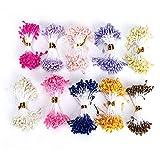 Sheens 900 Piezas de estambre de Flores, Perlas Dobles de 3 mm con Perlas Estambre de Flores Pistilo Color de Mezcla Estambres de Flores Accesorios para Sombreros (Color Aleatorio de 24 Colores)