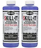 Best Algaecide For Pools - Bio-Dex Fast Acting Algaecide Skill-It 32oz. 2-Pack SK132-2 Review