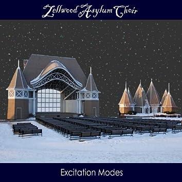 Excitation Modes