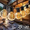 Svater 25FT Led Globe String Lights Outdoor LED Commercial Grade Patio Lights with 23 Socket 25Pcs E12 G40 Bulbs Decoration for Cafe Garden Gazebo Patio Bistro Vintage Connectable Hanging Led Lights