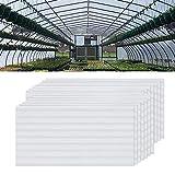 NAIZY - 14 placas alveolares de cámaras huecas de policarbonato, 4 mm de diámetro, 10,25 m2, placa de doble puente para invernadero, placas de repuesto (60,5 x 121 cm), transparente