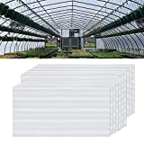 NAIZY 14 planchas alveolares de policarbonato de cámara hueca, 4 mm, 10,25 m², placas de doble puente para invernadero de jardín, placas de repuesto (60,5 x 121 cm), transparente