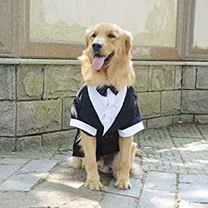 Lovelonglong Pet Costume Dog Suit Formal Tuxedo with Black Bow Tie for Large Dogs Labrador Clothing L-L