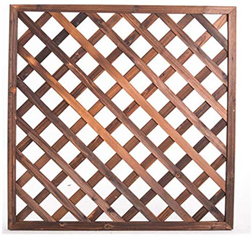 WYBD.Y Multifunktionale Gitterplatte aus Holzgitter, Wandblumenregal/Fotowand/Wanddisplay und Aufbewahrungsbox, Standregale