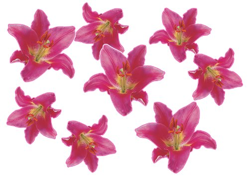 Autoaufkleber, Blumendesign: Flower Set 01-Mini-36 Stück