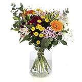 Ramo de Rosas, Flores Naturales a Domicilio Blossom® | Ramo de Rosas Naturales a Domicilio Frescas y Recién Cortadas | Entrega Gratis (VariadasMulticolor, 20tallos)