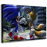 Canvas Pictures For Living Room Wall Canvas Paintings SONIC And The Tail Are The Best Brothers Wall Art Home Decor Decals Poster 12x8inch