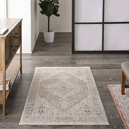 Nourison Enchanting Home Traditional Beige/Grey 3' x 5' Area Rug , 3' x 5'