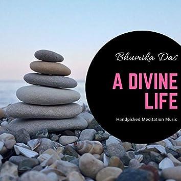 A Divine Life - Handpicked Meditation Music
