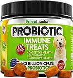 K9 Probiotics - Best Reviews Guide