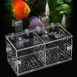 RBSD Caja de Aislamiento de Peces Colgante, incubadora de criadero de Acuario acrílico, Guppy para Peces bebé pez Payaso bebé para camarones bebé(20CM*10CM*10CM)