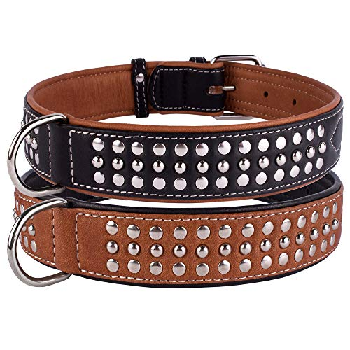 CollarDirect Studded Dog Collar Leather Pet Collars for Dogs Small Medium Large Puppy Soft Padded Brown Black (Black, Neck fit 23
