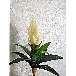 17″ protea stem, silk flower floral arrangements