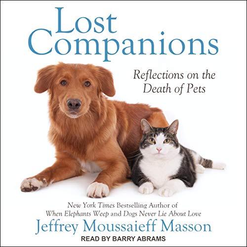 『Lost Companions』のカバーアート