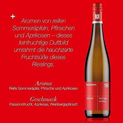 kaufmann-Rheingau-Riesling-Kabinett-Wein-feinherb-2018-Weisswein-Deutschland-VDP-Gutswein-bio-dynamisch