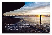 【官製 10枚】 離婚報告はがき SMSF-01-kan