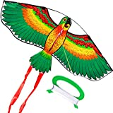 HENGDA KITE- Kites for Kids Children Lovely Cartoon Green Parrot Kites with Flying Line