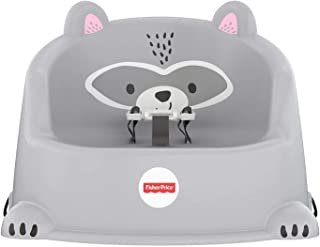 Fisher-Price Hungry Raccoon Booster Seat, Multi (GKF91)