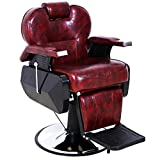 ARTIST HAND Black All Purpose Hydraulic Recline Barber Chair Salon Beauty Spa Shampoo Styling Chair for Beauty Shop (1 PCS, Burgundy)