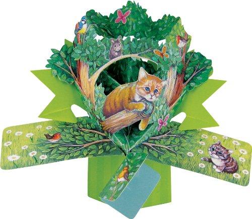 Second Nature - Biglietto D'Auguri Tridimensionale, Motivo: Gatto
