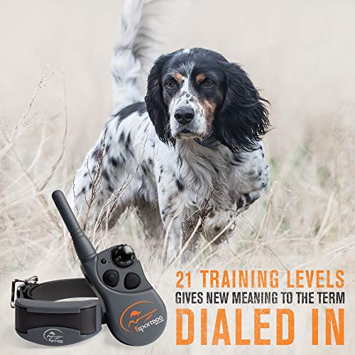 SportDog Brand 425 Rechargeable E-Collar