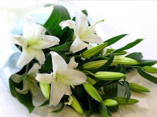 カサブランカ花束 5〜7りんを5本