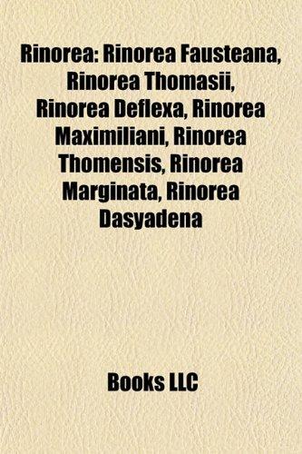Rinorea Rinorea: Rinorea Fausteana, Rinorea Thomasii, Rinorea Deflexa, Rinorerinorea Fausteana, Rinorea Thomasii, Rinorea Deflexa, Rino