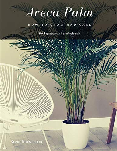 Areca Palm: How to grow and care