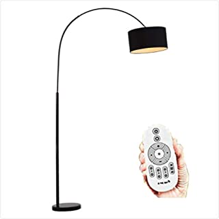 TG Dimmable 9W Floor Lamp for Bedroom, Over the Couch Hanging Light On Arching Pole with Unique Hanging Drum Shade Living ...