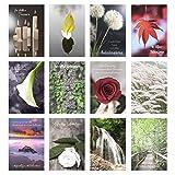 Edition Seidel Set 12 einfühlsame Premium-Trauerkarten / Beileidskarten mit Umschlag. Trauerkarte Beileidskarte mit Spruch (Doppelkarten/Klappkarten mit Briefumschlag)