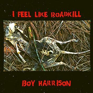 I Feel Like Roadkill
