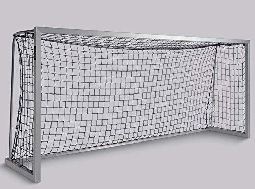 Haspo Fußballtor - mobiles Jugendtor 5,00 x 2,00 m
