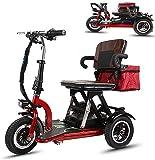 CYGGL Triciclo Elettrico Scooter per Adulti Pieghevole, Sedia a Rotelle Elettrica Tre Ruote Triciclo Elettrico Esterno/Interno Anziani Disabili Bicicletta Elettrica Portatile Che Trasporta 120