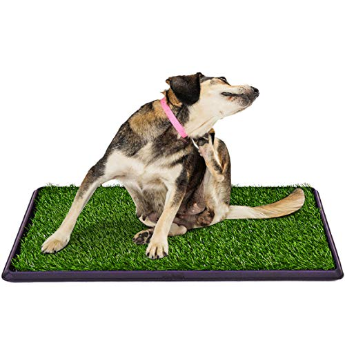 Artificial Grass Dog Pee Pads, Indoor/Outdoor Use Professional Pet Potty Training Toilet Grass Mat for Puppy and Small Pets Potty Trainer