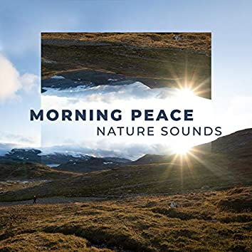 Morning Peace: Relaxing Nature Sounds, Healing Waters, Ocean Waves, Wilderness Stream, Birds Singing