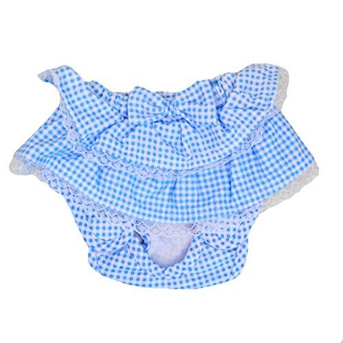 ISABELLE Confortable et Respirant Physiologiques Hygiène Pantalons Couche Réutilisable pour Chiot chienne animal femelle/M Bleu