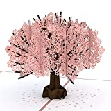 Lovepop Cherry Blossom Pop Up Card, 5x7 - 3D Greeting Card, Mother's Day Card, Card for Wife or Mom, Anniversary...