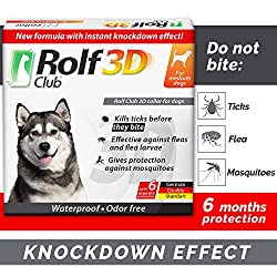 Runner Up for Best Dog Flea Collar: Rolf Club 3D FLEA Collar for Dogs
