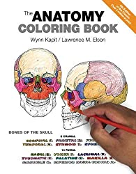 Anatomy Coloring Books for Med Students, Massage Therapists ...