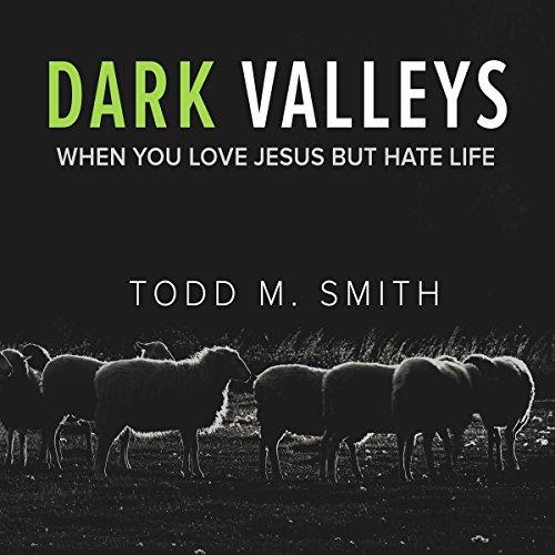 Dark Valleys audiobook cover art