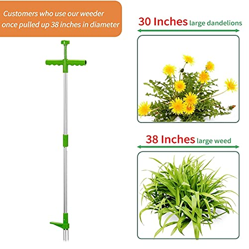 Naswei Weed Puller Stand Up Dandelion Puller Root Remover Tool Manual Removal Grandpas Weeder Gardening Tools with 3 Stainless Steel Claws, 39