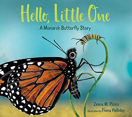 Hello, Little One: A Monarch But...