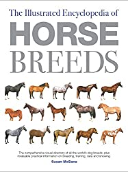 A Comprehensive Visual Directory of the World's Horse Breeds