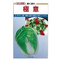 白菜 種 極意 小袋(約10ml)
